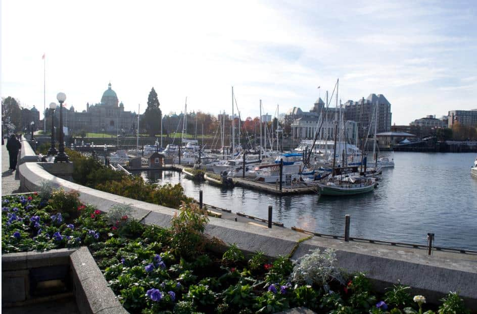 Top 5 Things to Do in Victoria, BC