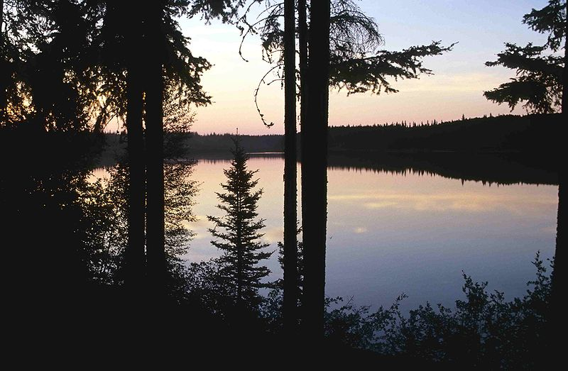 Pine Lake at Wood Buffalo National Park | 25 Things You Didn't Know About Canada | packmeto.com