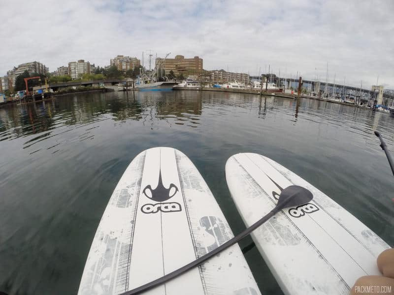 How Not to Learn How to Paddleboard (or Why You Shouldn't Go Paddleboarding For the First Time at Granville Island)