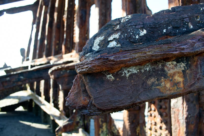 Details of the Peter Iredale Shipwreck | packmeto.com