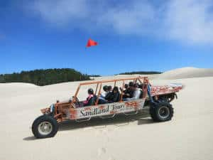 Sand Dunes Buggy Side View
