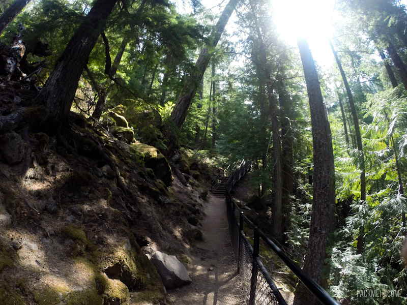 Toketee Falls Trail - Visiting the Toketee Falls en Route to Crater Lake | packmeto.com