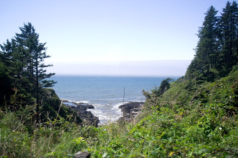 Oregon Coast Drive