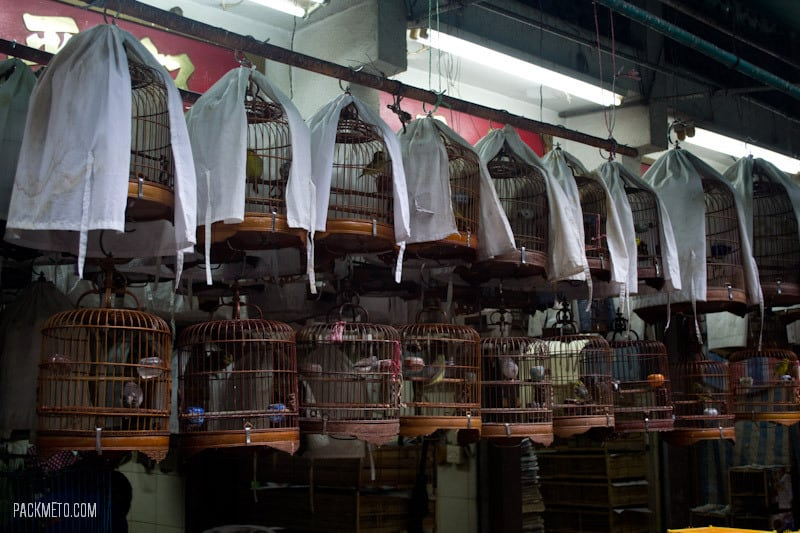 Bird Market Hong Kong