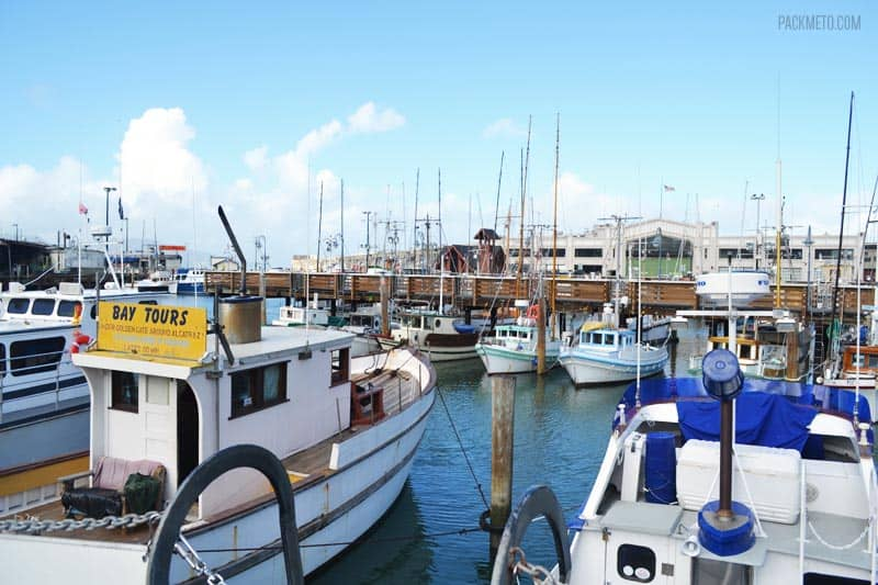 A Tourist Trap or a Must Visit? Exploring San Francisco's Fisherman's Wharf & Pier 39