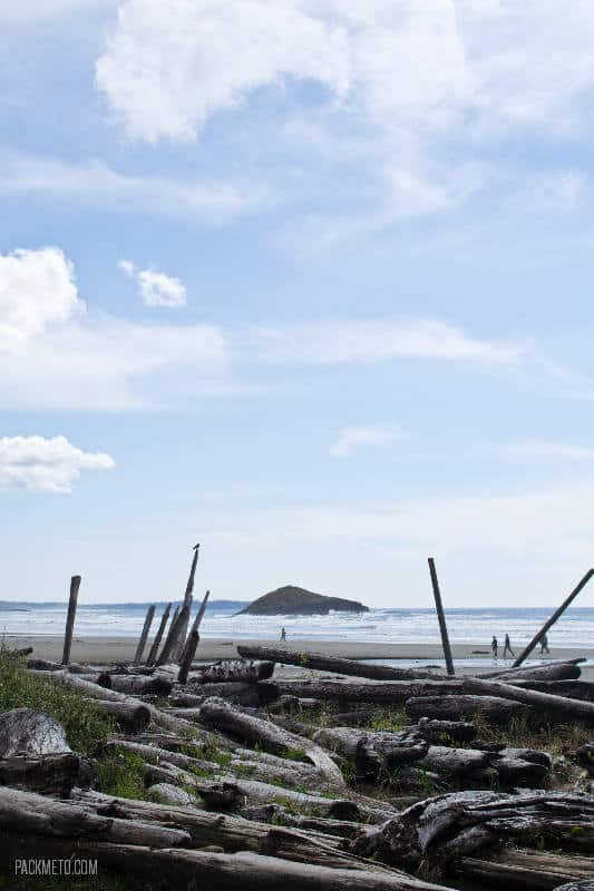 Tofino Beach Logs - 21 Stunning Photos of Tofino and Surrounding Areas | packmeto.com