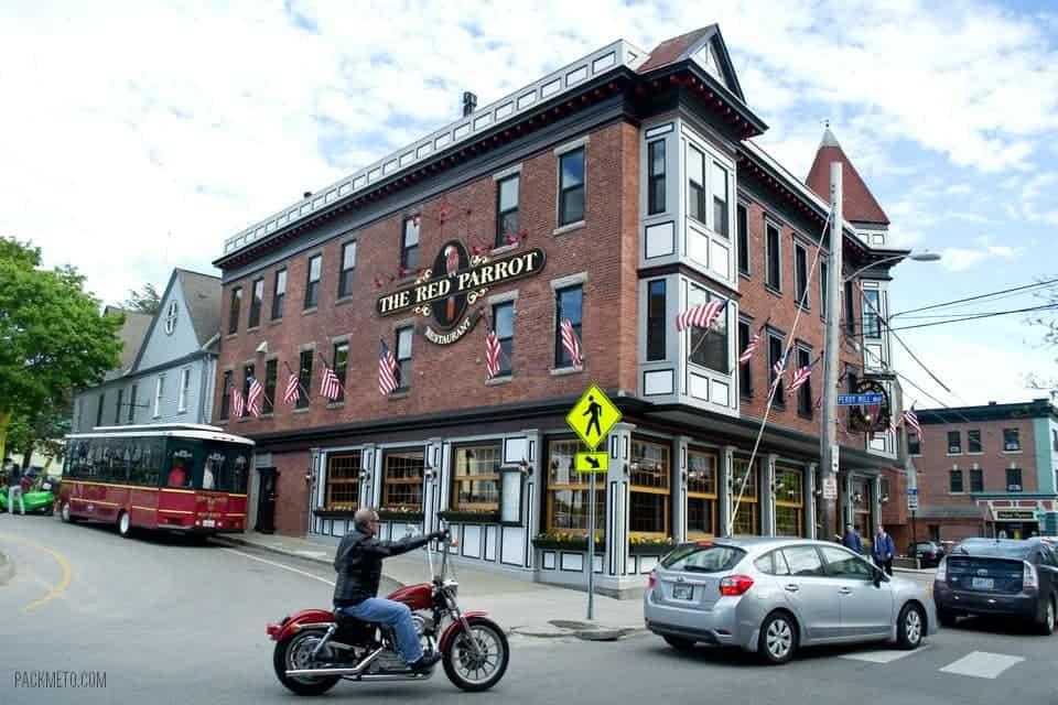 Newport Rhode Island Red Parrot | packmeto.com