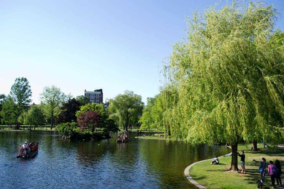 Boston Public Garden | packmeto.com