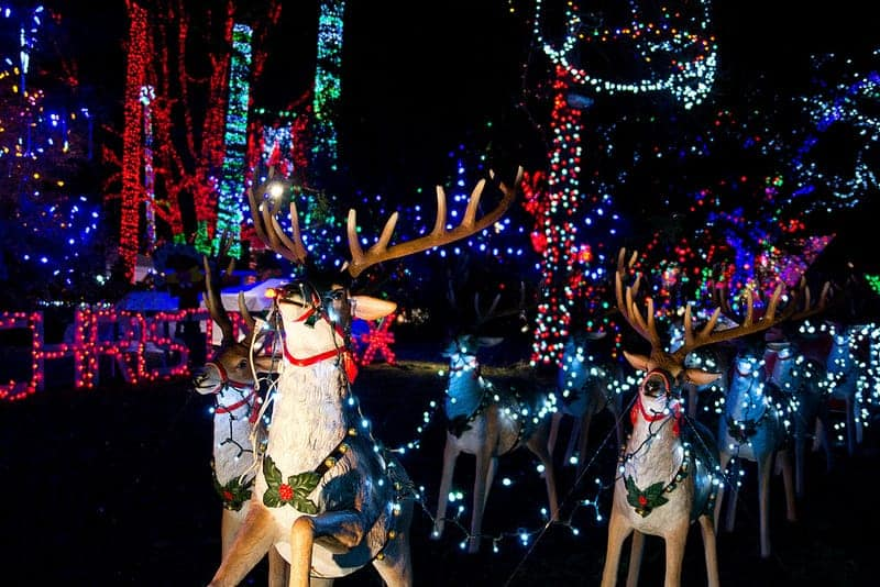 Holiday Cheer at Bright Nights in Vancouver