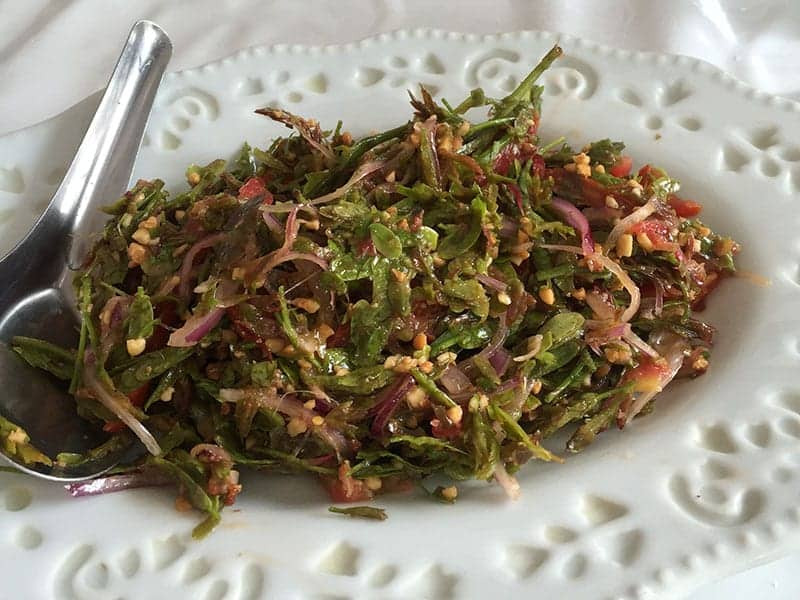 Tea leaf salad Chang Mai