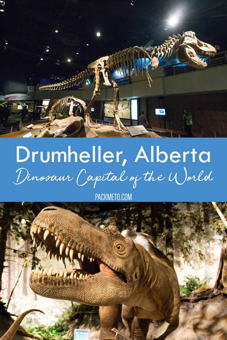Visit Drumheller, Alberta, the dinosaur capital of the world to experience all things dinosaur. From visiting the Royal Tyrrell Museum to taking a drive on the Dinosaur Trail, experience what life here would have been like during the Mesozoic Era.
